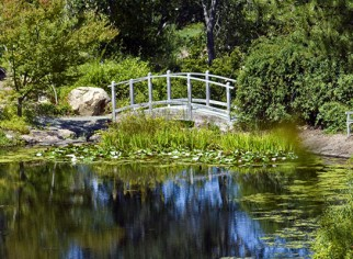 Photo of Quarry Hill Botanical Garden