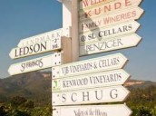 View all posts in About Visiting Wineries