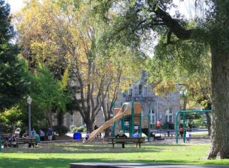 Photo of Sonoma Plaza Playground
