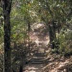 bart-steps_hikes