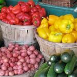 Photo of Sonoma Farmers Market