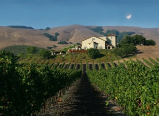 Photo of Gloria Ferrer Winery