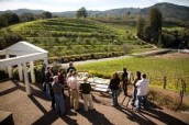 View all posts in Sonoma Wineries Open to Public