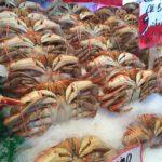 Image Crab
